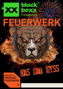 Feuerwerk Plakat 3