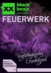 Feuerwerk Plakat 6